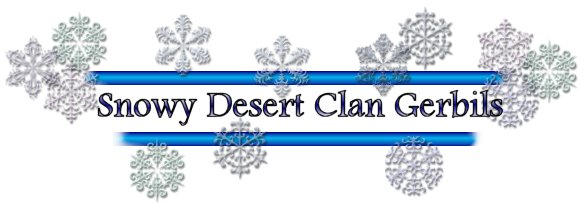 Snowy Desert Clan Gerbils